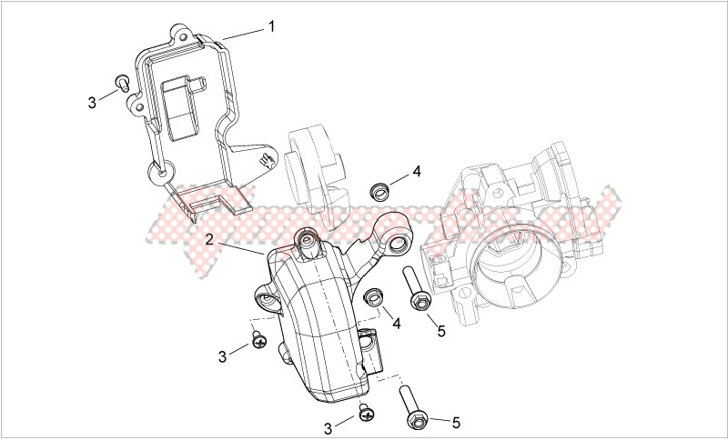 Engine-Throttle body Protection