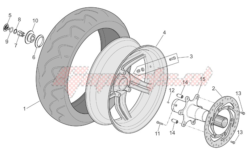 Frame-Rear wheel I