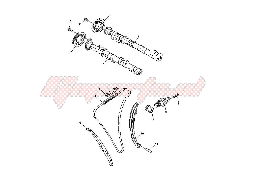 CAMSHAFT – CHAIN blueprint