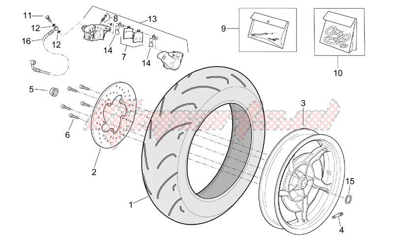 Frame-Rear wheel - Rear caliper