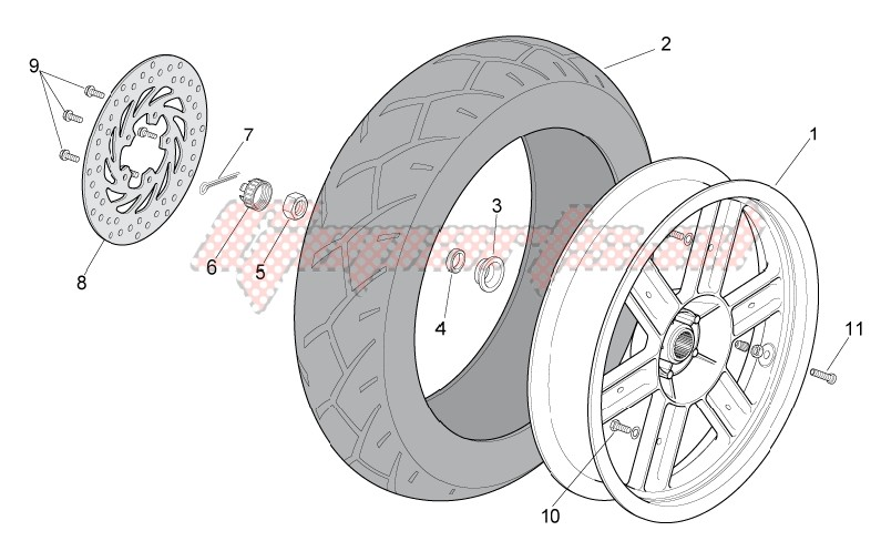 Frame-Rear Wheel
