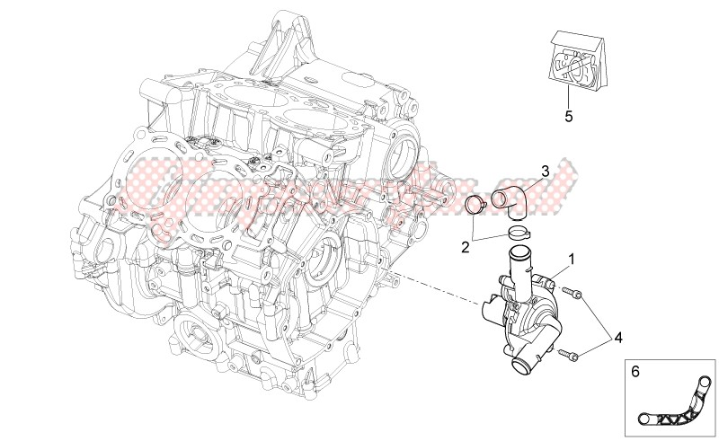 Engine-Water pump