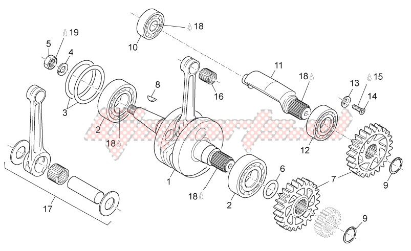Crankshaft - Balance shaft image