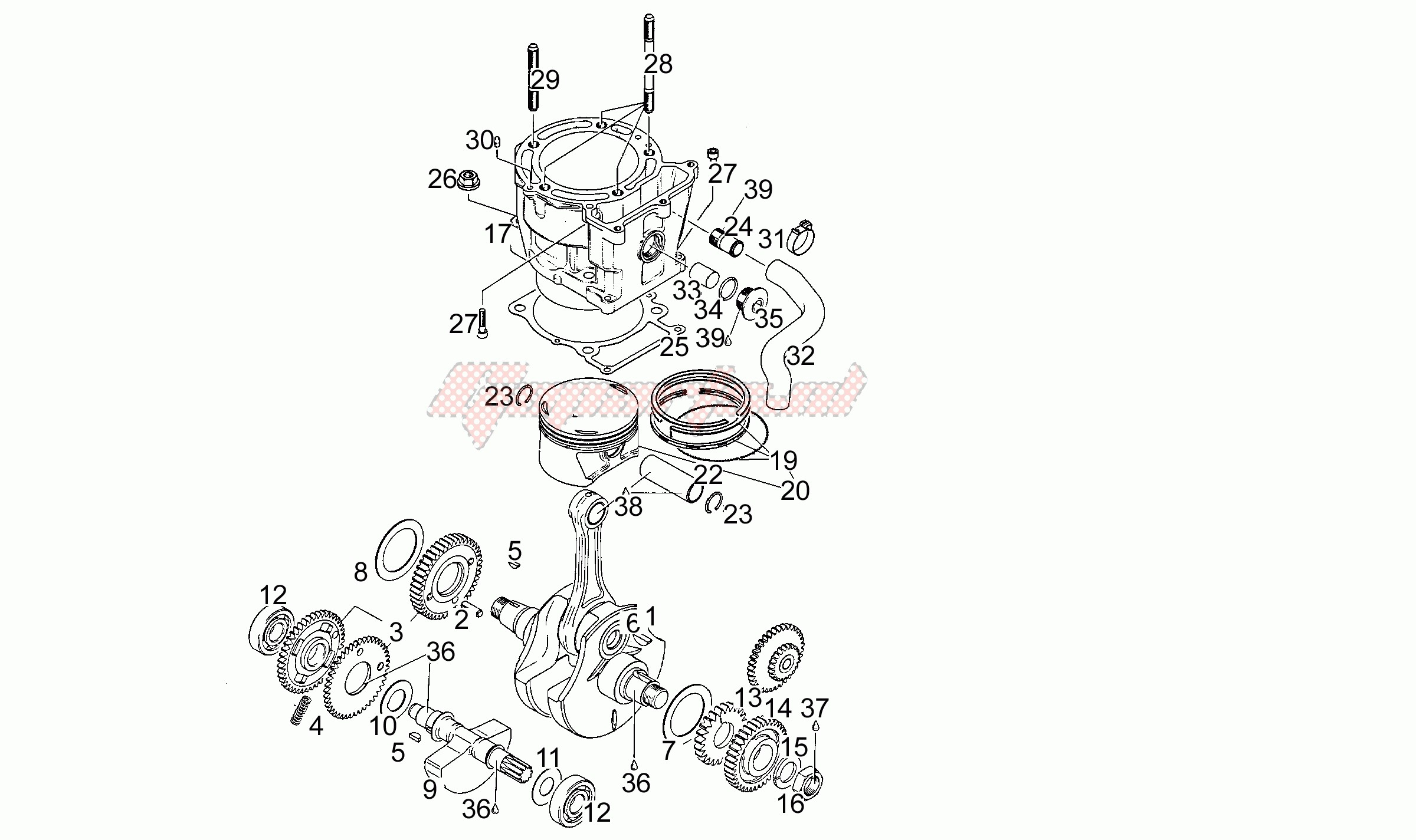 Engine-Drive shaft - Cylinder