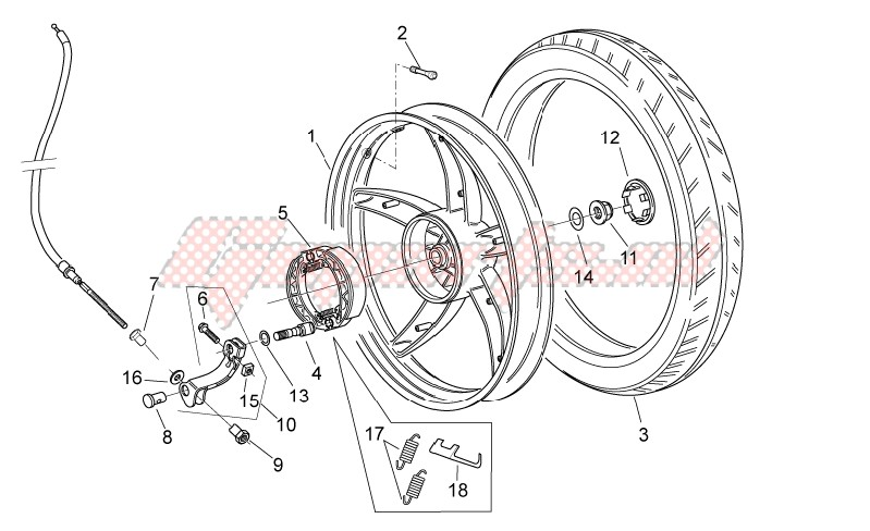 Frame-Rear wheel - disc brake