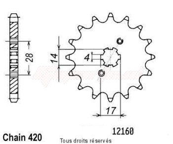 Product image: Sifam - 12160CZ14 - Sprocket Derbi 50 00-05   12160cz   14 teeth   TYPE : 420