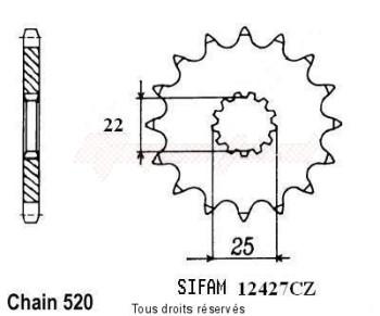 Product image: Sifam - 12427CZ13 - Sprocket Tm 250 Enduro -01      13 teeth   TYPE : 520