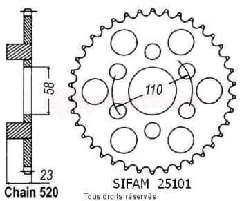 Product image: Sifam - 25101CZ40 - Chain wheel rear 125 Red Rose 88-95   Type 520/Z40