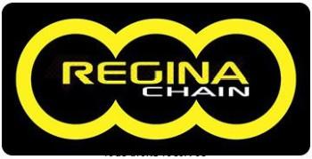Product image: Regina - 428-EB-102 - Chain 126 Eb ORO 102 Links Chain 428 Standard Gold