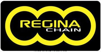 Product image: Regina - 428-ORS-134 - Chain 126 ORN 134 Links     TYPE: 428
