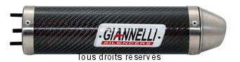 Product image: Giannelli - 53612HF - Silencer  GPR 125 - RACING 125  04/05 CEE Silencer  Carbon Ø 70 mm