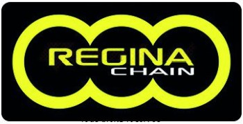 Product image: Regina - 95B100001-ORS - Chain Kit Bmw S1000 RR Hyper O-ring Kit 17 44