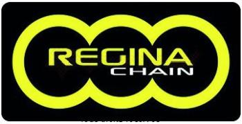 Product image: Regina - 95E005016-ORO - Chain Kit Derbi GPR 50 Chain Standard Kit 11 52