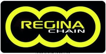 Product image: Regina - 95H060096-ORP - Chain Kit Honda Cbf 600 N/S Special O-ring year 08- Kit 16 42