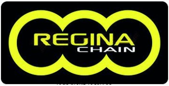 Product image: Regina - 95R00500-ORO - Chain Kit Rieju TangoO 50 Chain Standard Kit 11 53