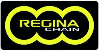 Product image: Regina - 95R005099-ORO - Chain Kit Rieju RS3 50 Chain Standard Kit 11 47