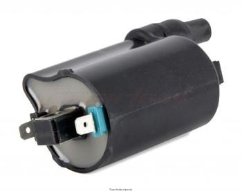 Product image: Kyoto - IND194 - Bobine Externe Honda 12V - 2.8 Ohm Bolt Distance 80mm